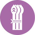 asperge-violette