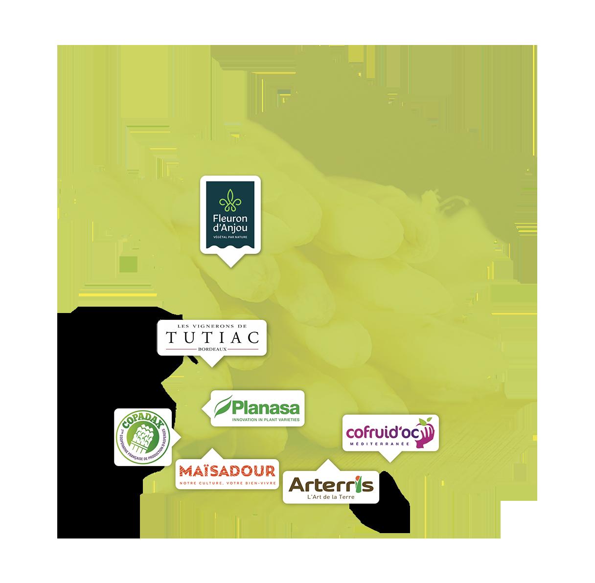 CARTE ASPERGES de France