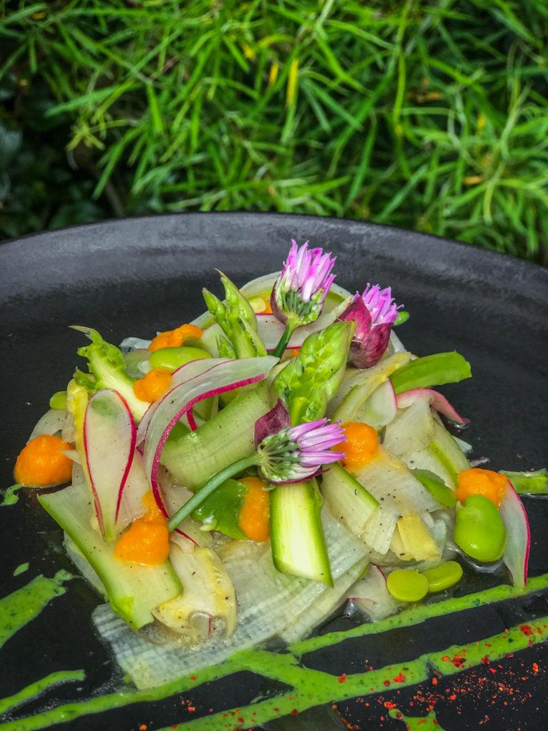 Salade d'asperges fraîches, fèves et radis, condiment carotte-pomelo